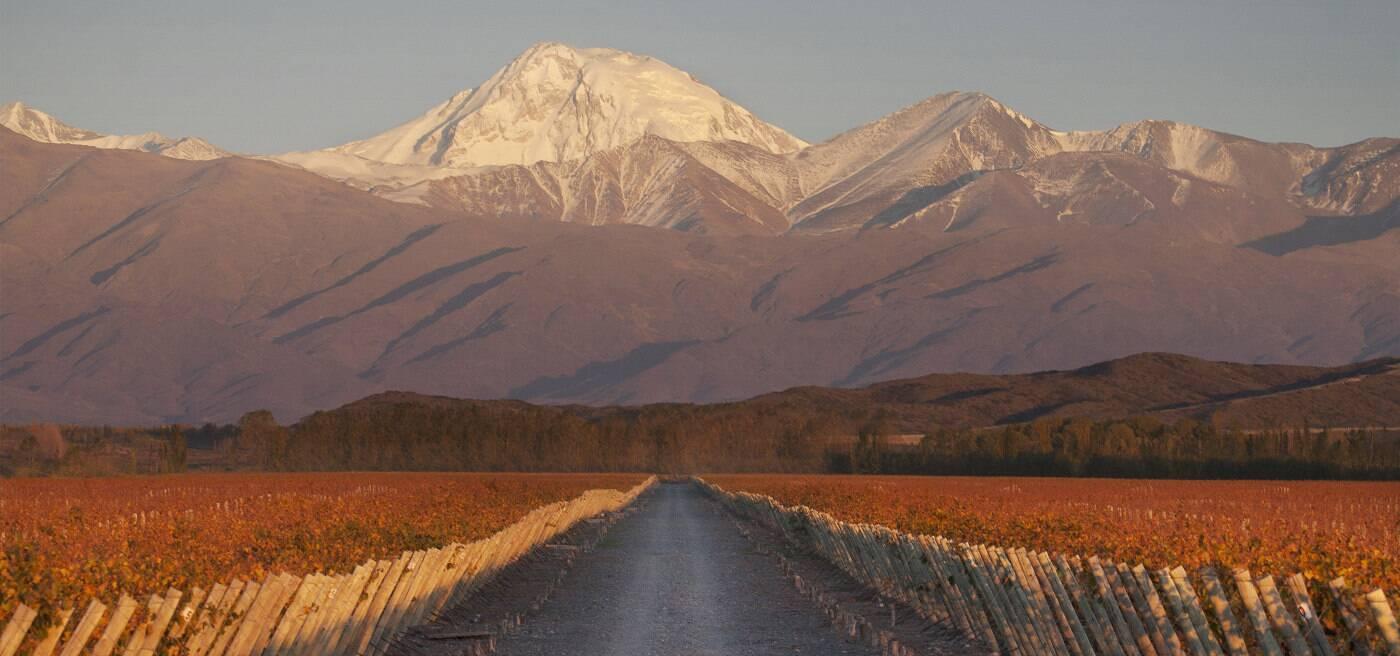 Terrazas De Los Andes Fine Vintages Wines Amp Spirits Lvmh