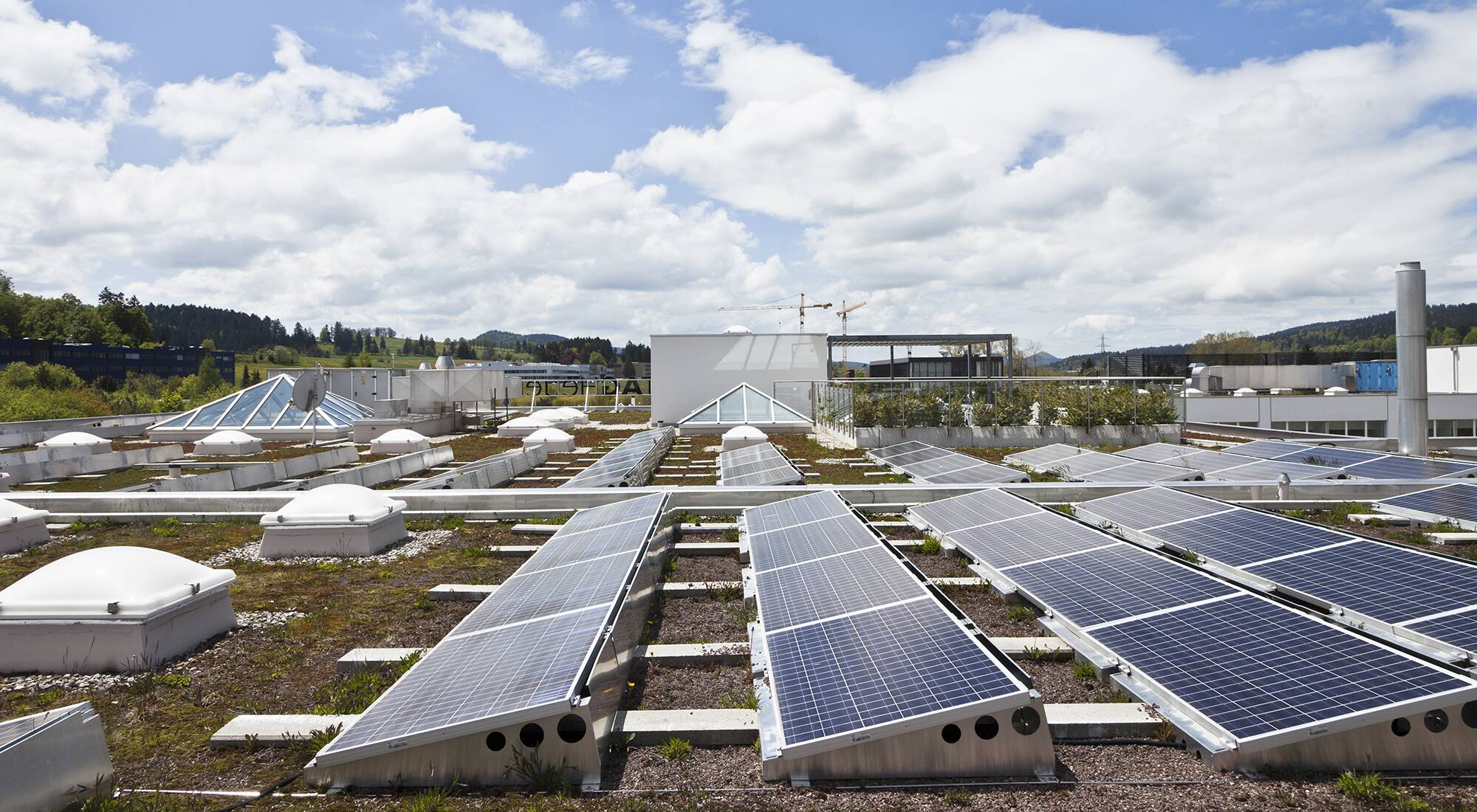 LVMH Houses powered by renewable energies! - LVMH